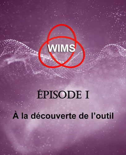 APMEP Toulouse WIMS Episode I